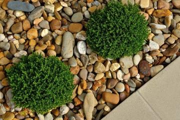 Dekorsten och trädgårdssten